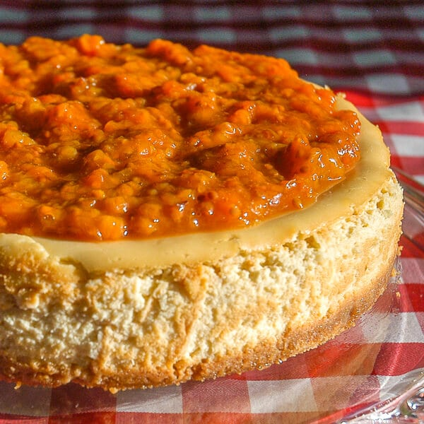 Bakeapple Cheesecake