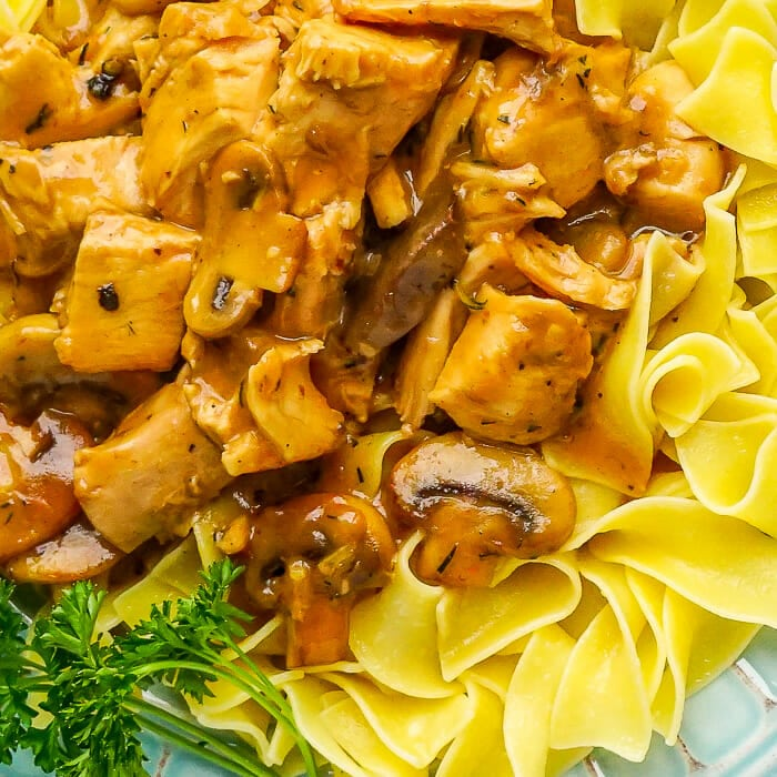 Easy Leftover Turkey Stroganoff close up photo
