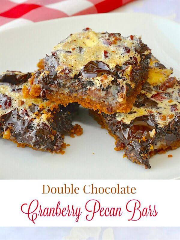 Double Chocolate Cranberry Pecan Bars