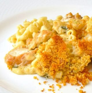 Tarragon Chicken Mac and Cheese close up photo of a single serving on a white plate