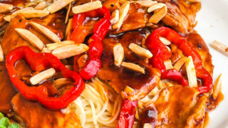 Kung Pao Pork close up photo of one serving