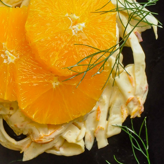 Spicy Orange Fennel Salad overhead close up photo