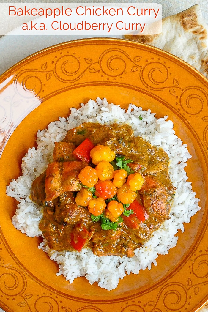 Bakeapple Chicken Curry photo with title text for Pinterest