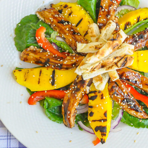 Chicken Teriyaki Salad with Grilled Mango close up photo of a single serving