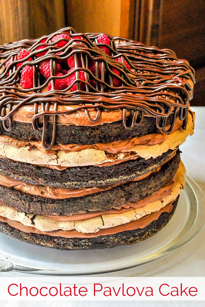 Chocolate Pavlova Cake Image with title text for Pinterest
