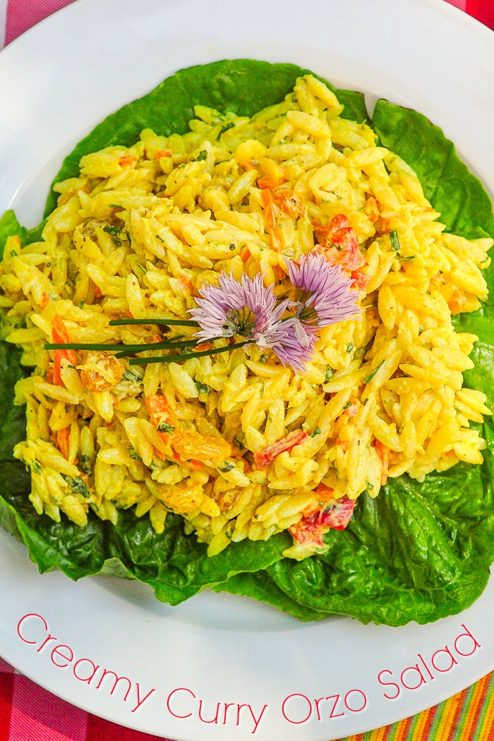 Creamy Curry Orzo Salad on a bed of lettuce with title text added for Pinterest