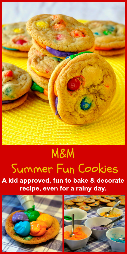 ummer Fun M and M Cookies