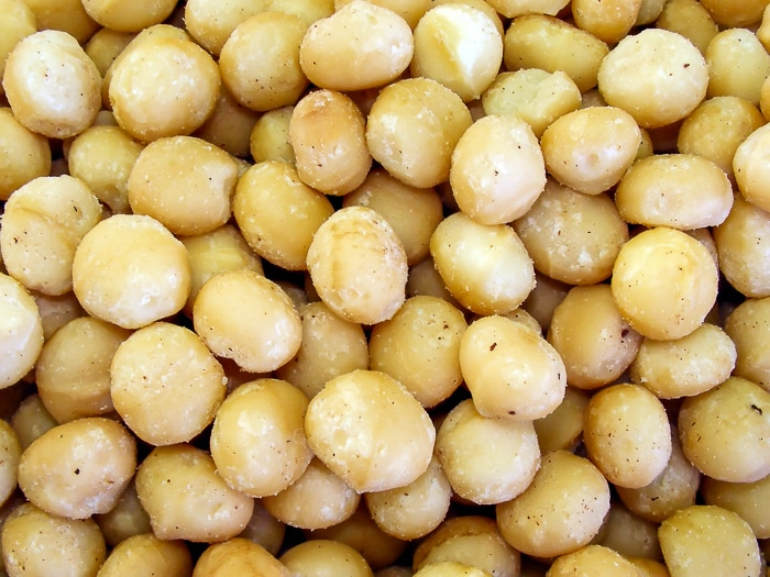 Close up photo of shelled macadamia nuts