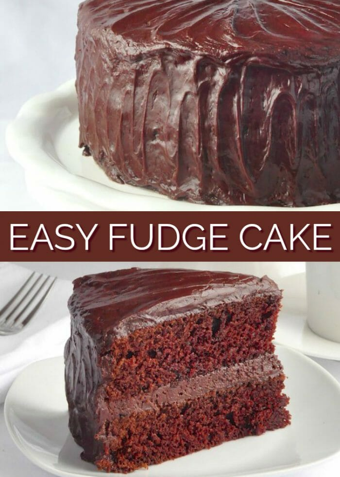 Turn A Regular Cake Recipe Into A Chocolate Cake Recipe