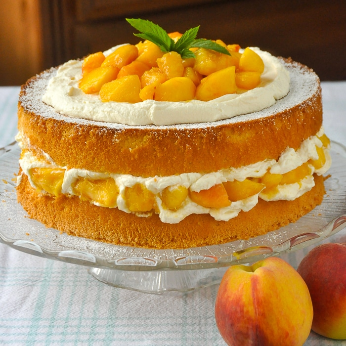 Bourbon Peach Shortcake square cropped photo for featured image