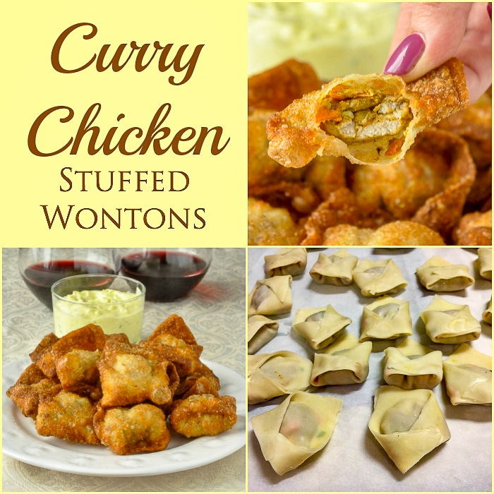 Curry Chicken Stuffed Wontons photo collage square