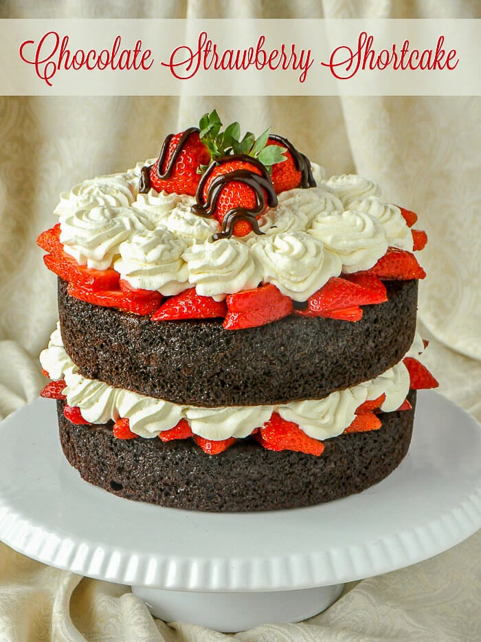Easy Chocolate Strawberry Shortcake image with title text