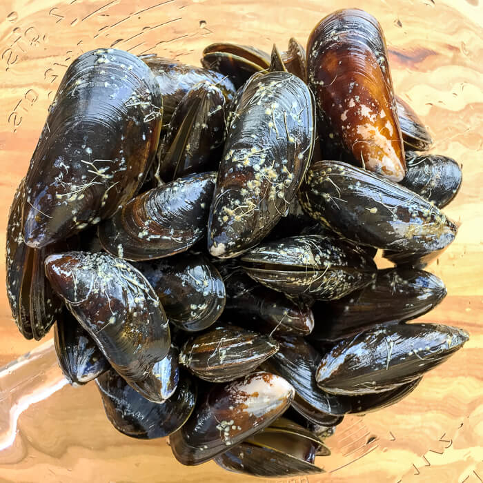 Fresh mussels in a clear glass bowl.