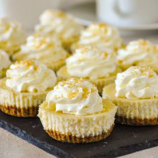 Coconut Cream Cheesecake Cupcakes