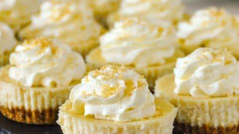 Coconut Cream Cheesecake Cupcakes