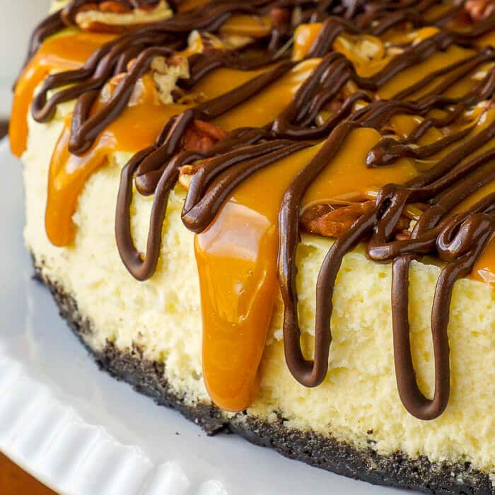 Turtle Cheesecake close up photo
