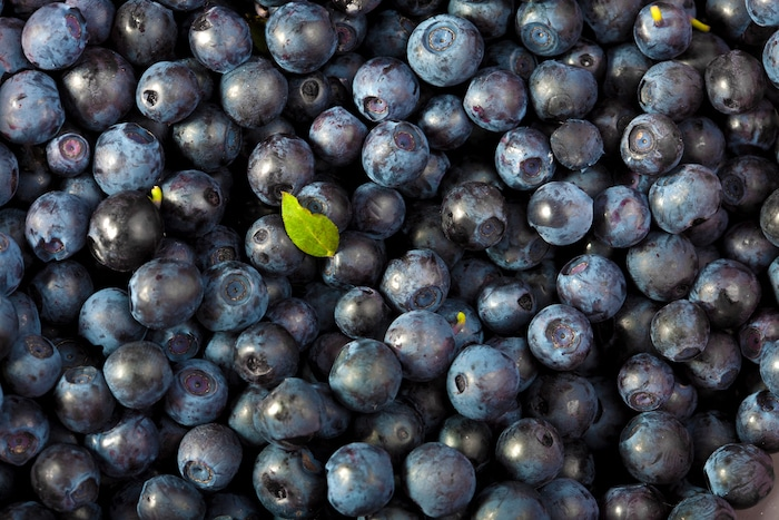 Fresh blueberries close up.