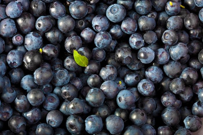 Fresh blueberries close up.