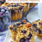 Low Fat Blueberry Almond Butter Muffins image with title text for Pinterest