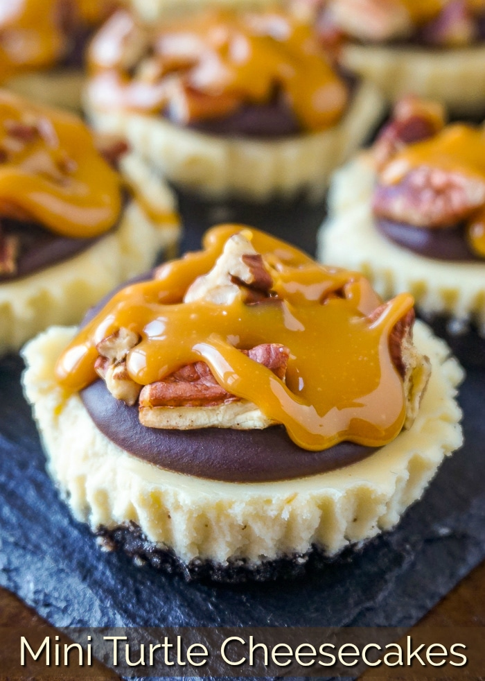 Mini Turtle Cheesecakes photo with title text for Pinterest