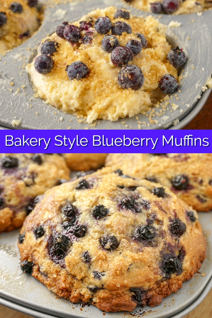 Bakery Style Blueberry Muffins image collage with title text for Pinterest