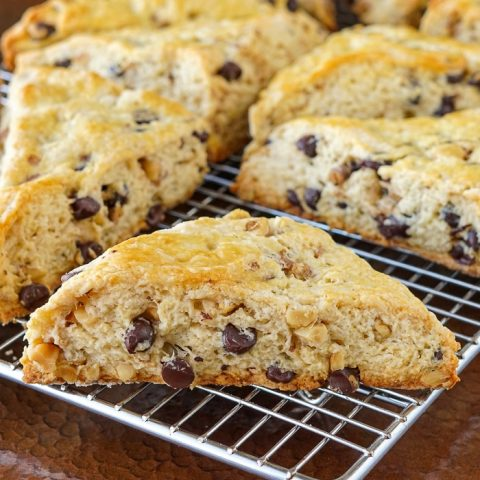 Chocolate Chip Walnut Scones close up photo of one scone for featured image