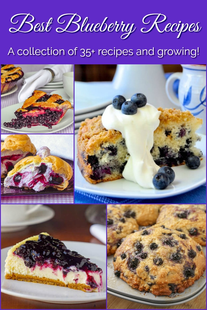 Best Blueberry Recipes photo collage with title text added for Pinterest