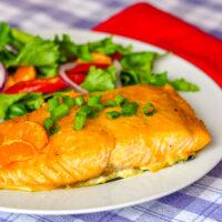 Ginger Orange Glazed Salmon close up photo on. white plate