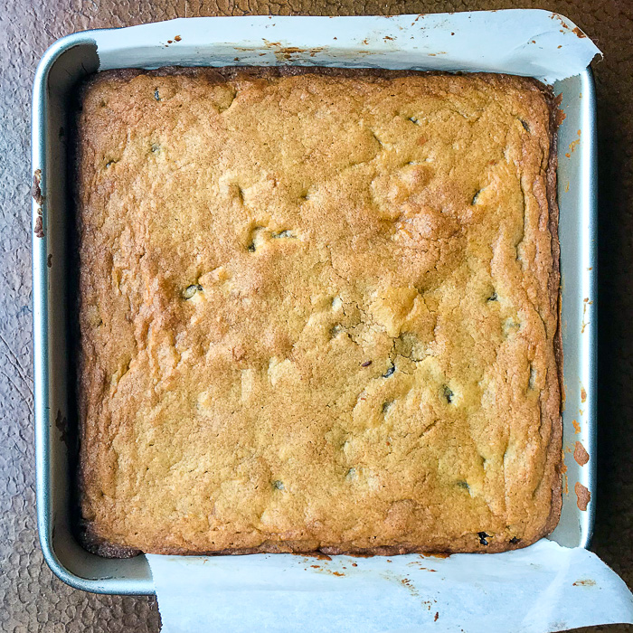 The Easiest Chocolate Chip Squares fresh from the oven