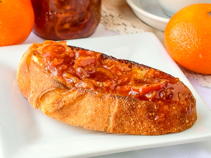 Close up photo of a slice of toast with clememtine marmalade on a white plate